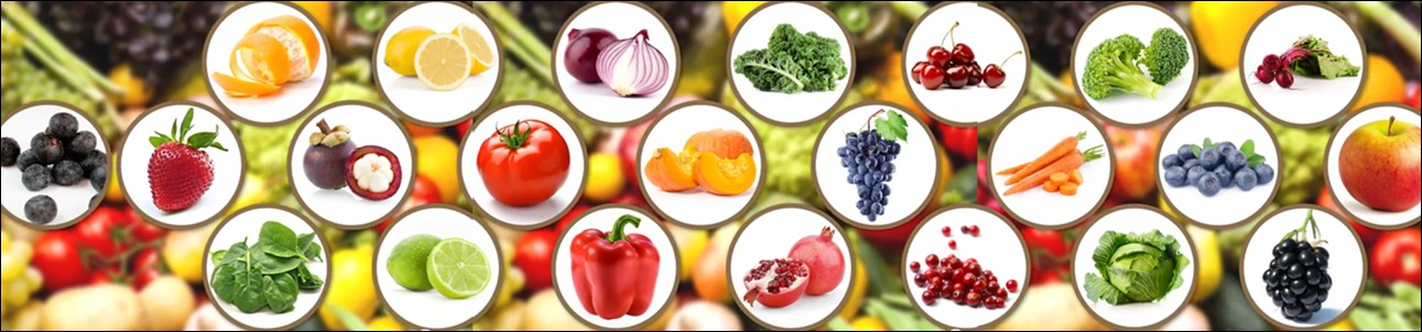 Variety of fruits and vegetables used in Forever Daily.